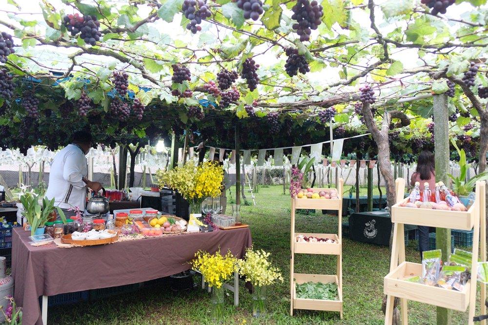 葡萄樹下下午茶