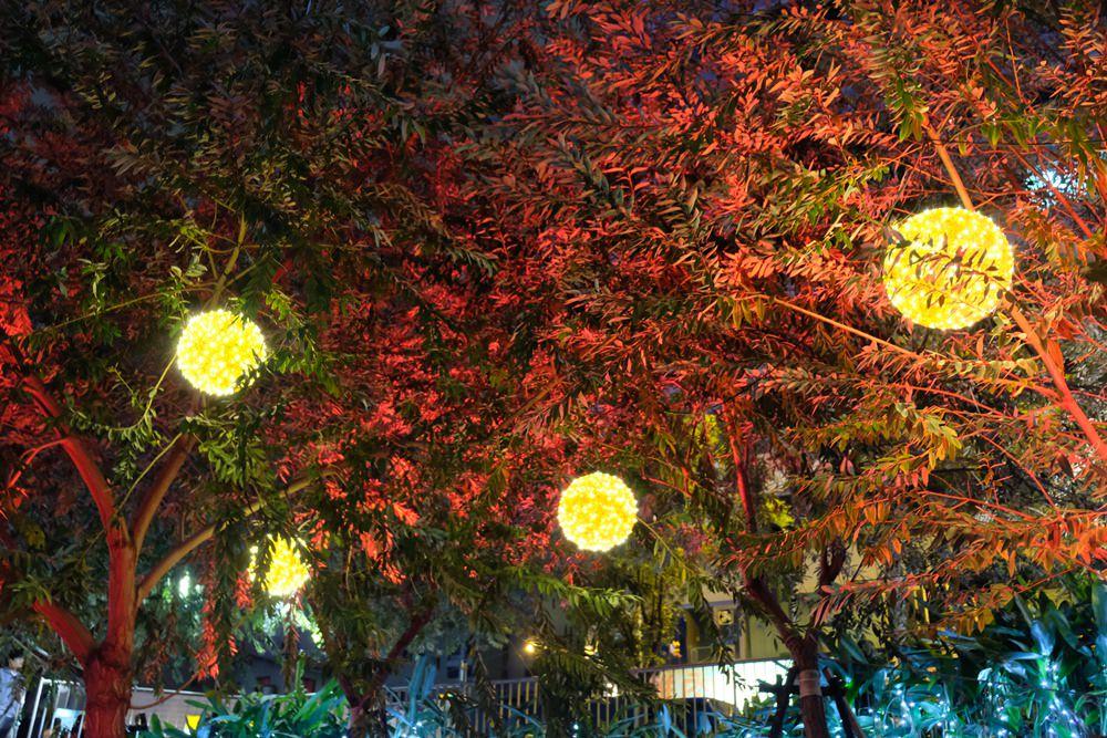 台中柳川聖誕樹