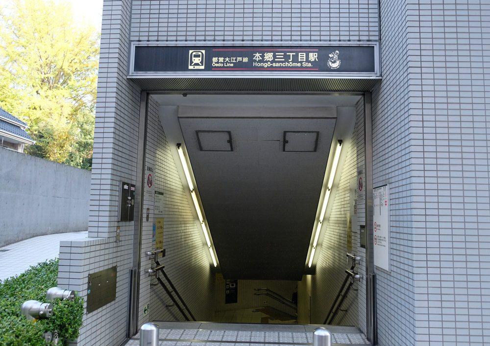 東京大學銀杏