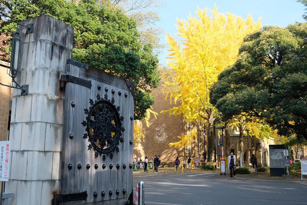 東京銀杏推薦