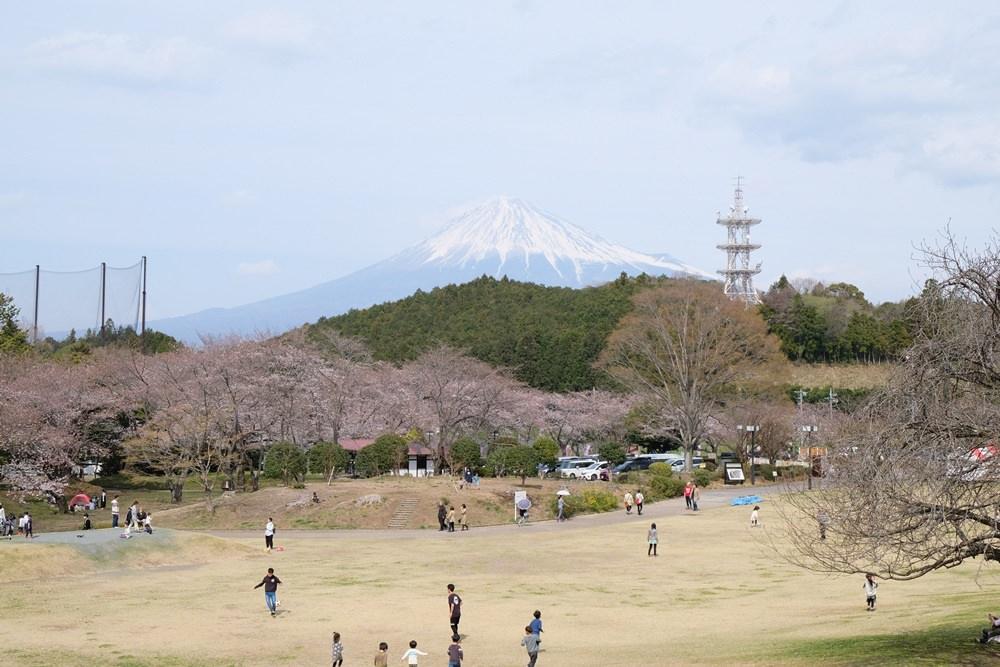靜岡旅遊景點