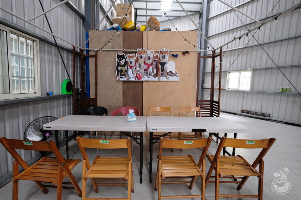 台中柴犬咖啡館