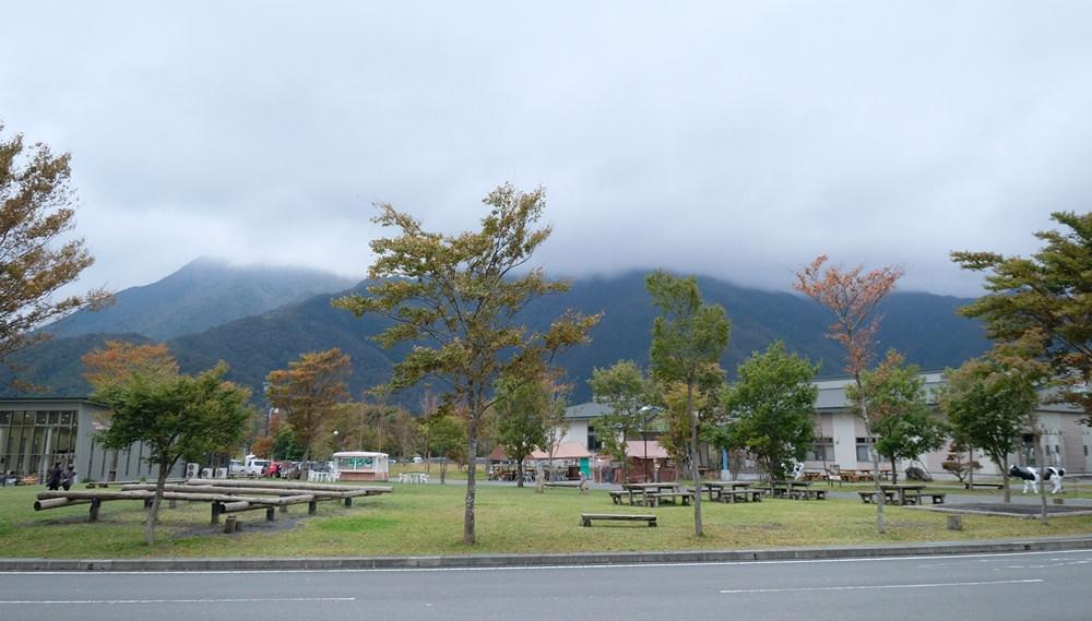靜岡朝霧高原