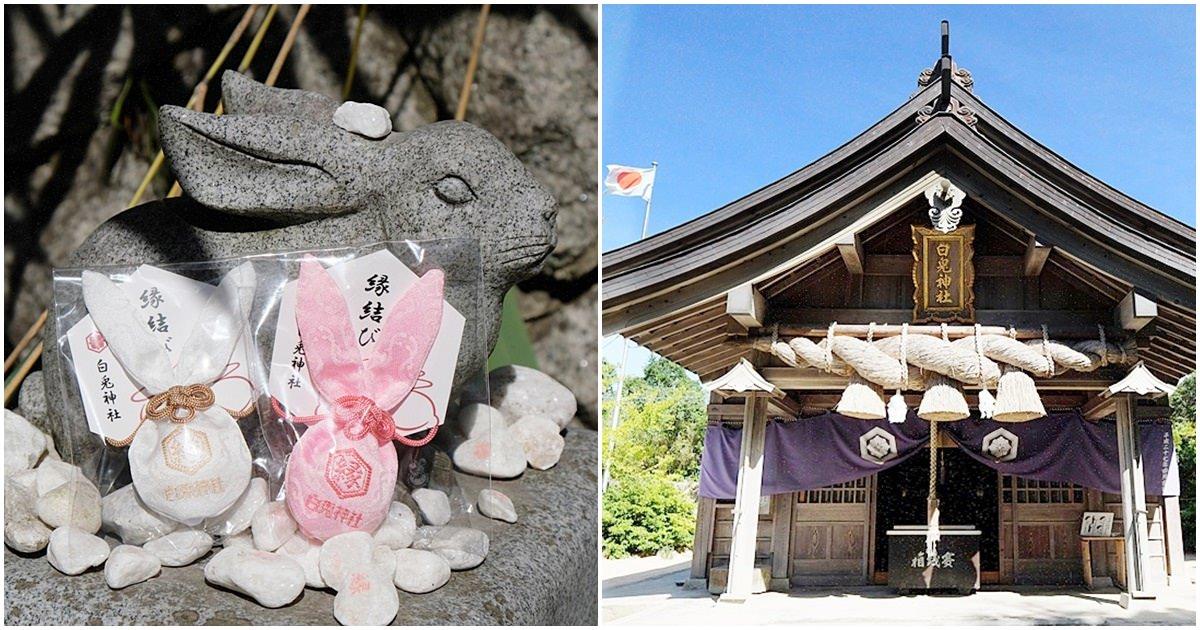 鳥取白兔神社︳兔子御守超犯規!萌到讓人「破財」,買鳥取伴手禮或求姻緣必來白兔神社
