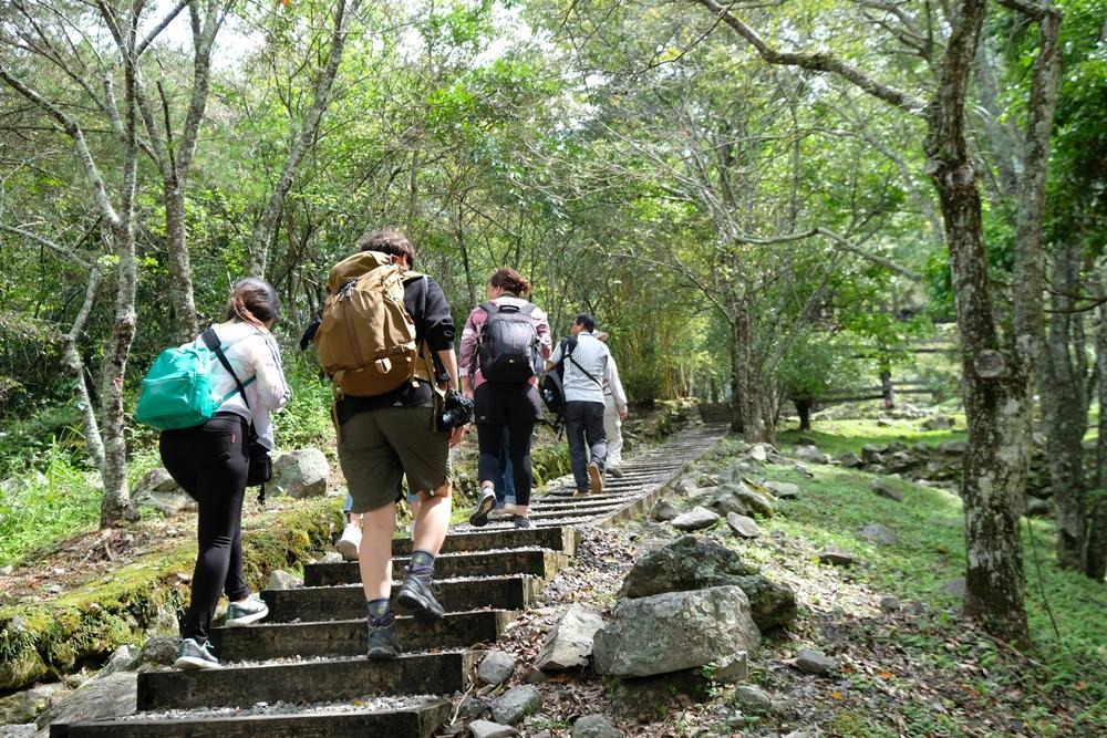 八仙山國家森林遊樂區︳森林巴士雄獅旅遊天天出發,一日遊/二日遊行程參考