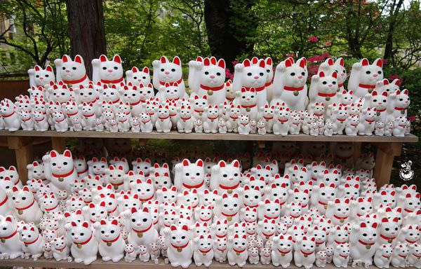 【日本東京】豪德寺 // 招福貓的發源地,滿滿的招福貓 (不是招財貓唷)